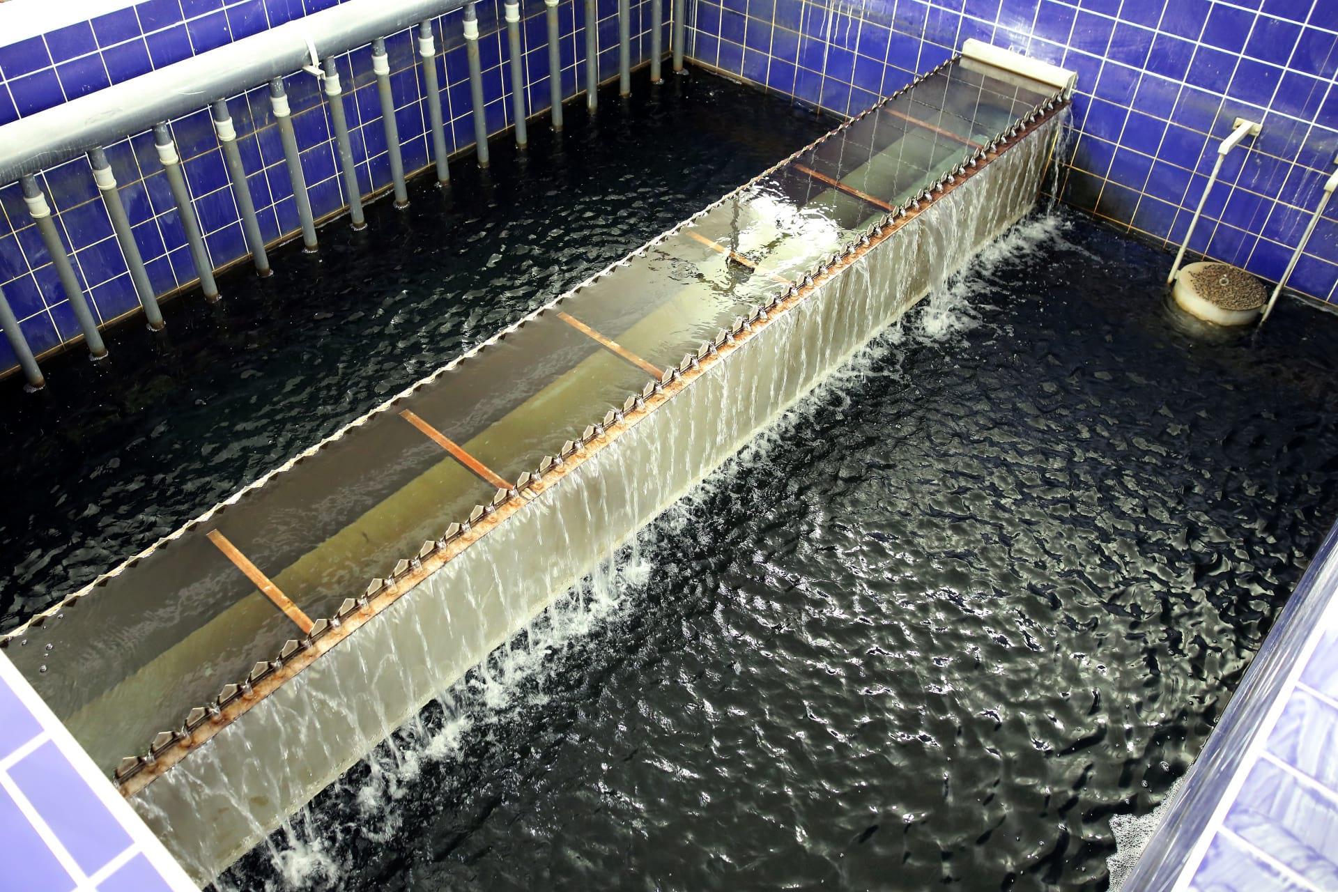 Úpravna vody Písty
